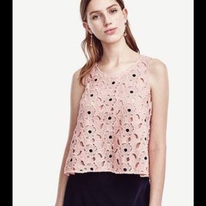 Ann Taylor Begonia Lace Flounce Top